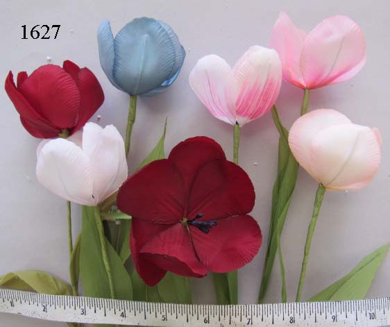 Mint Tulip or Poppy