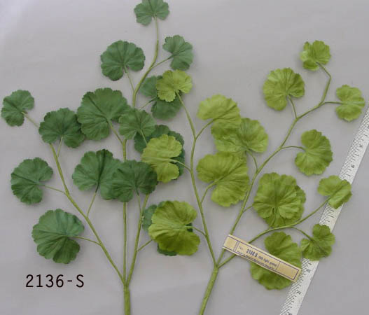 German Silk Geranium Leaf Branch