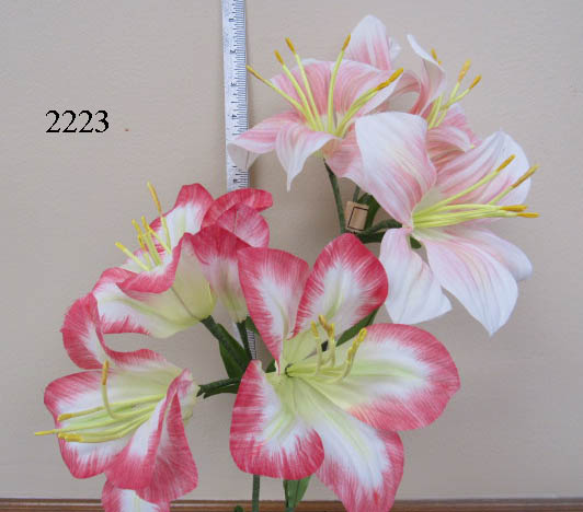 Large Ameryllis by 3 & Bud