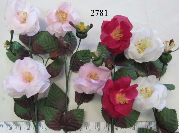 Wild Rose by 2 & 2 Buds