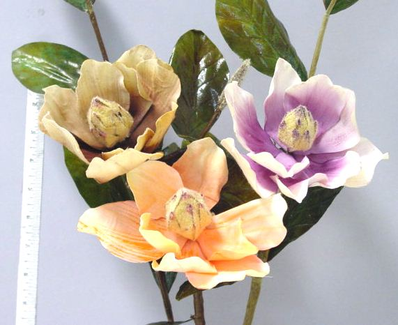 Magnolia with Bud and Leaves interior design