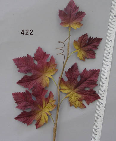German Burgundy Shaded Maple Leaf