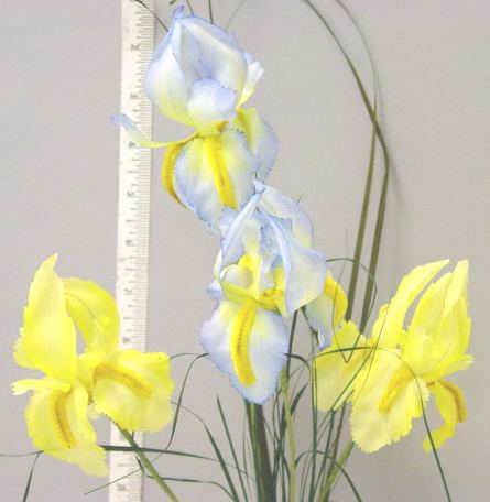 Iris By 2 & Grass  --natural looking German made for display