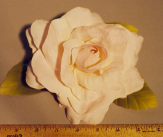 Large High Count Rose for home d